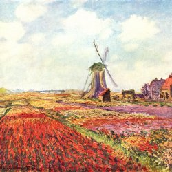 Claude-Monet-Tulpen-von-Holland