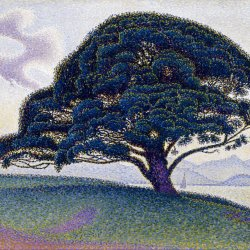 Paul-Signac-The-Bonaventure-Pine