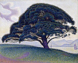 Paul Signac The Bonaventure Pine Wandbild