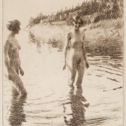 Anders-Zorn-Shallow
