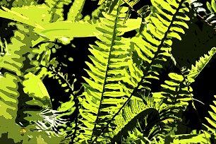 Grüne  Wandbilder