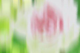 Pastell Wandbilder