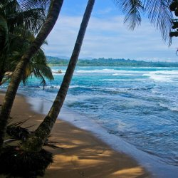 Cahuita-Nationalpark-Strand