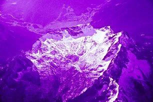 Violette Wandbilder