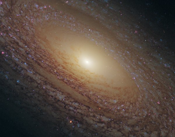 Hubble Spiral Galaxy NGC2841