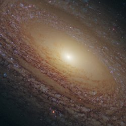 Hubble-Spiral-Galaxy-NGC2841
