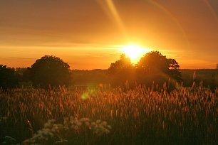 Sonnenuntergang Wandbilder